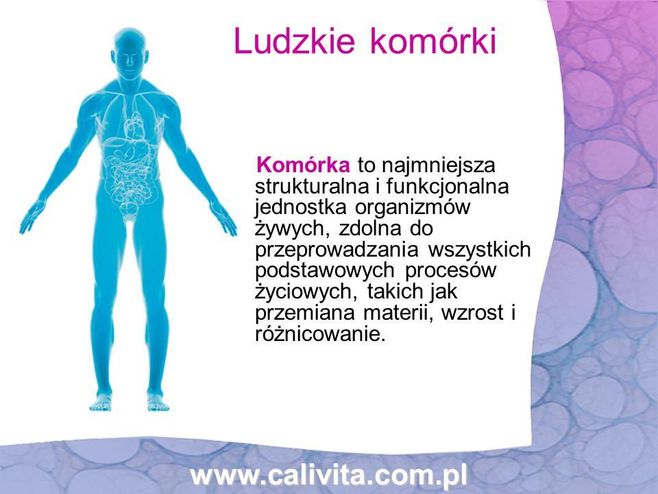 Ludzkie komórki www.calivita.com.pl