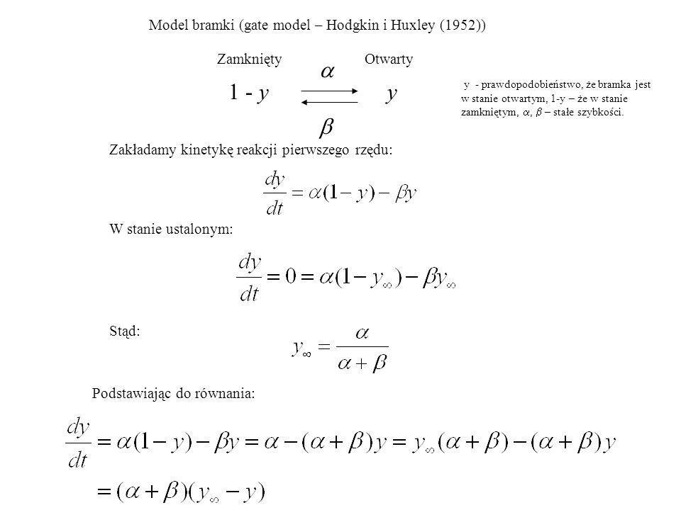 a 1 - y y b Model bramki (gate model – Hodgkin i Huxley (1952))