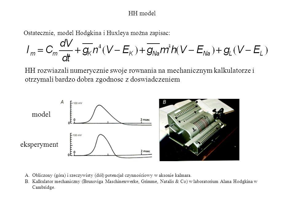 HH modelOstatecznie, model Hodgkina i Huxleya można zapisac: