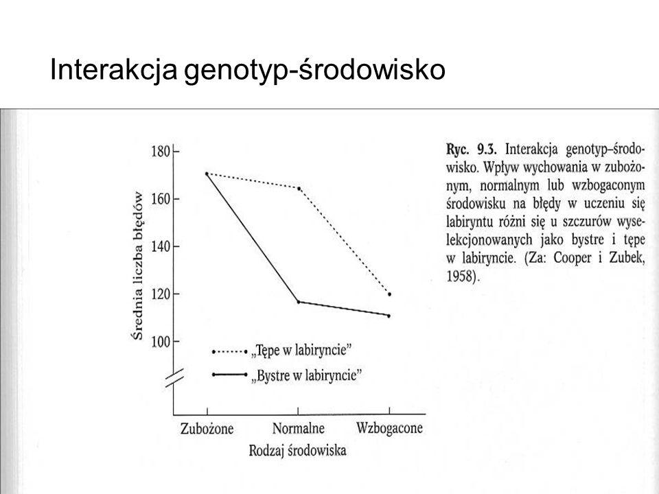 Interakcja genotyp-środowisko