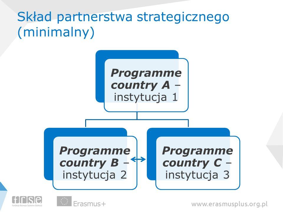 Skład partnerstwa strategicznego (minimalny)