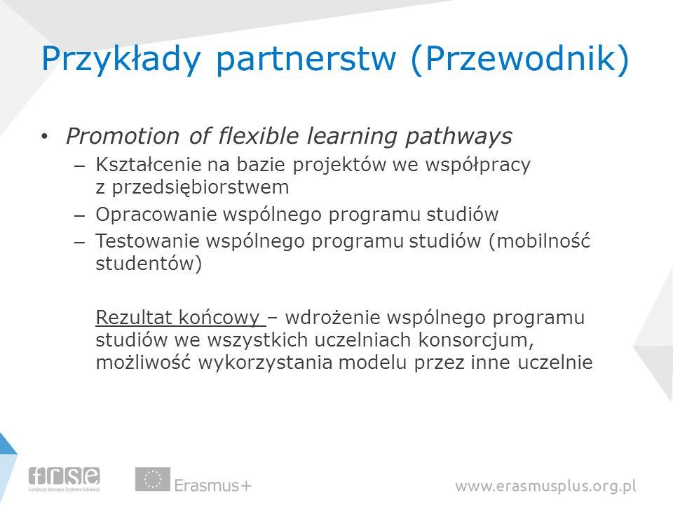 Przykłady partnerstw (Przewodnik)