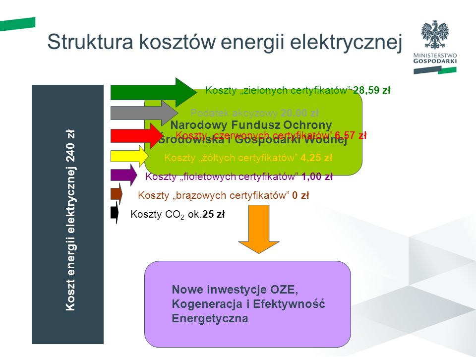 Struktura kosztów energii elektrycznej
