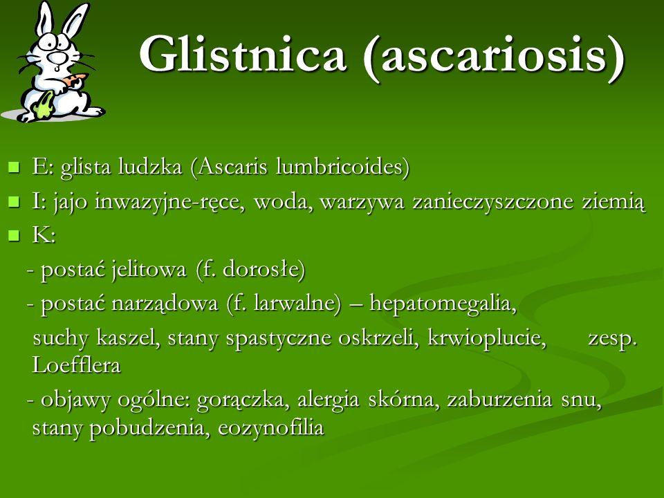 Glistnica (ascariosis)