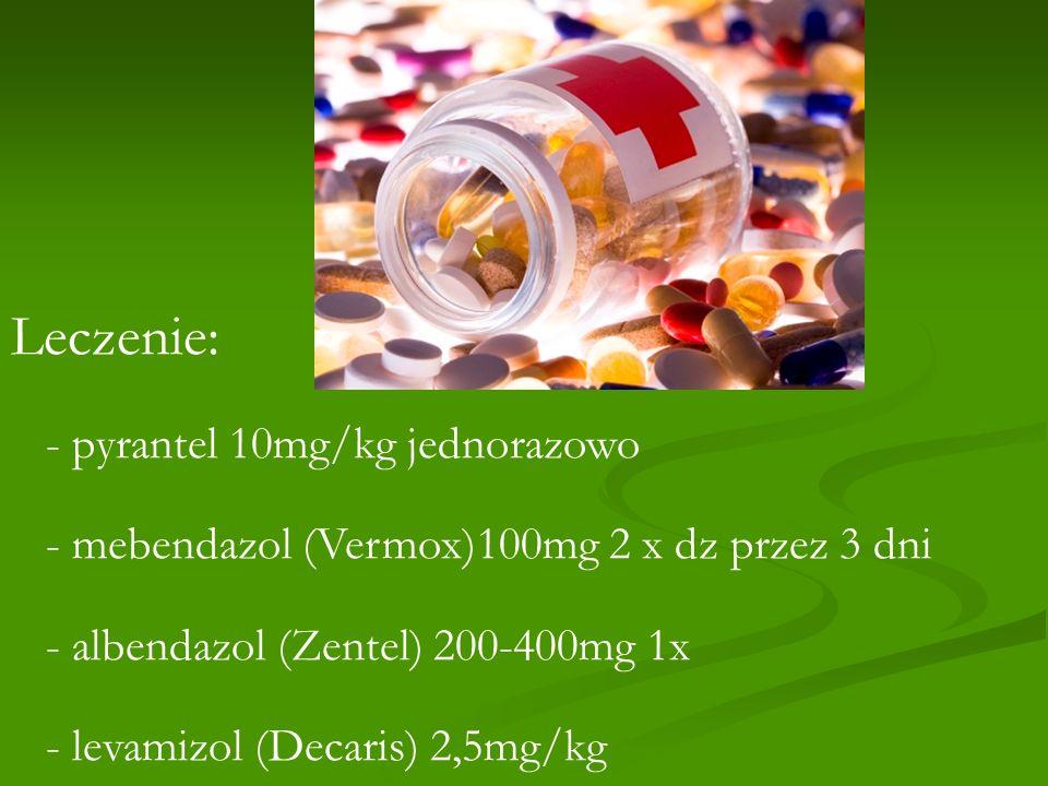 Leczenie: - pyrantel 10mg/kg jednorazowo