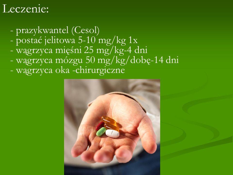 Leczenie: - prazykwantel (Cesol) - postać jelitowa 5-10 mg/kg 1x