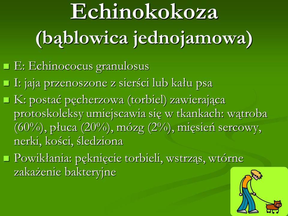 Echinokokoza (bąblowica jednojamowa)