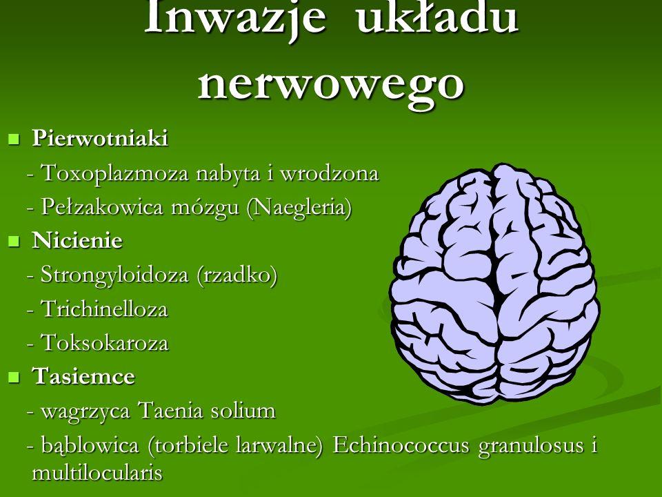 Inwazje układu nerwowego