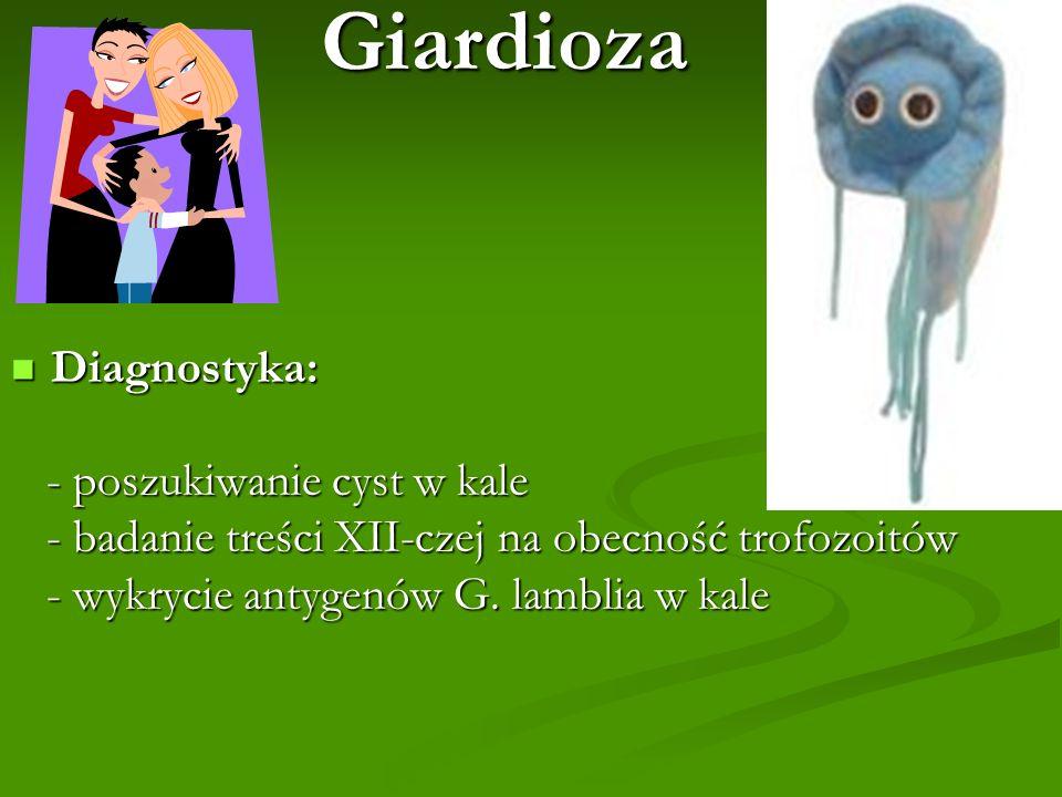 Giardioza Diagnostyka: - poszukiwanie cyst w kale