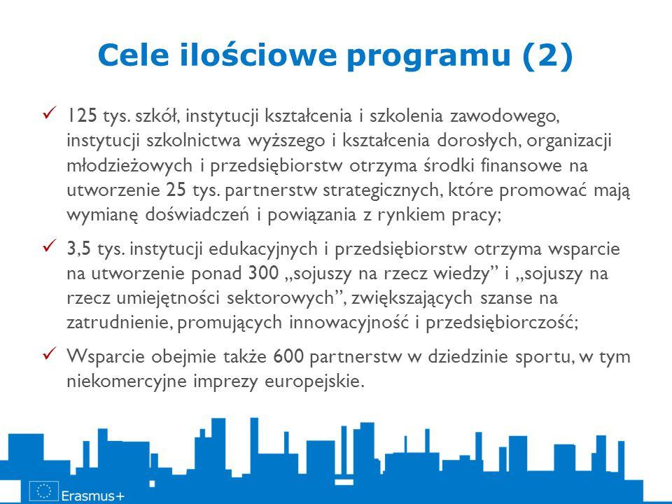 Cele ilościowe programu (2)