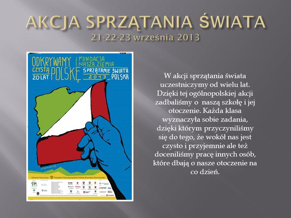 AKCJA SPRZĄTANIA ŚWIATA 21-22-23 września 2013