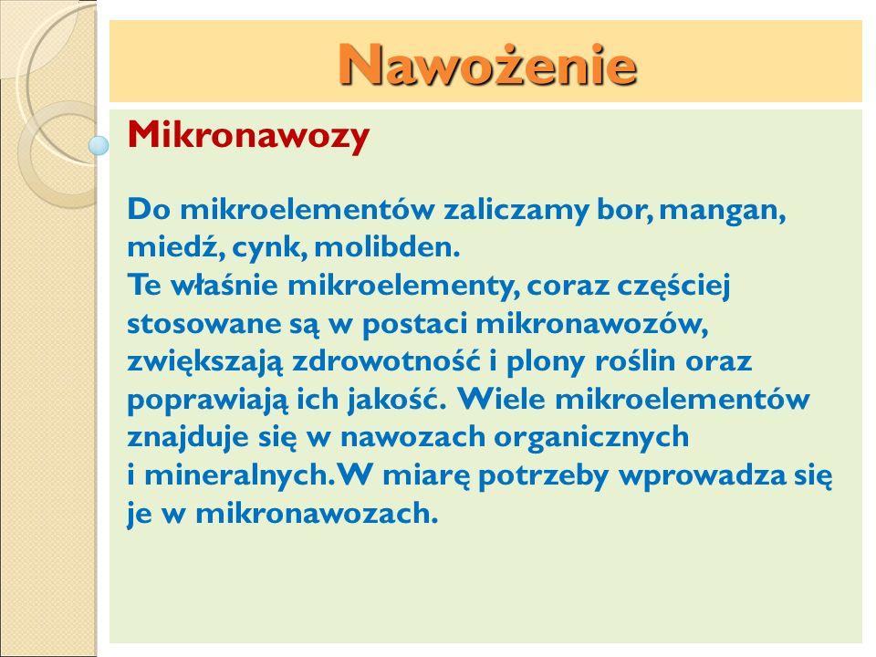 Nawożenie Mikronawozy