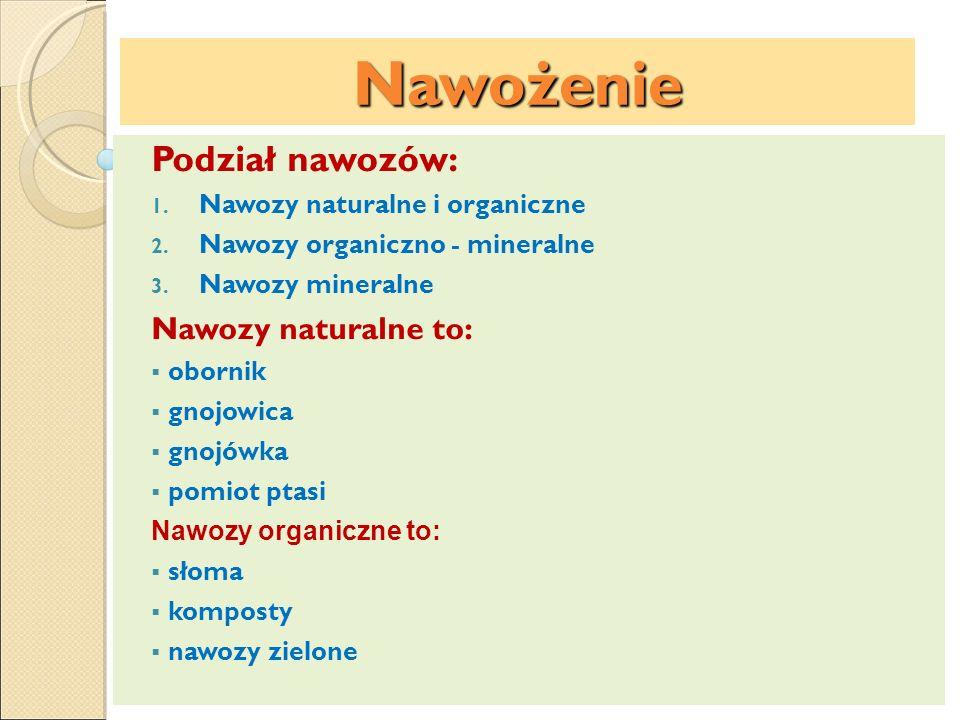 Nawożenie Podział nawozów: Nawozy naturalne to:
