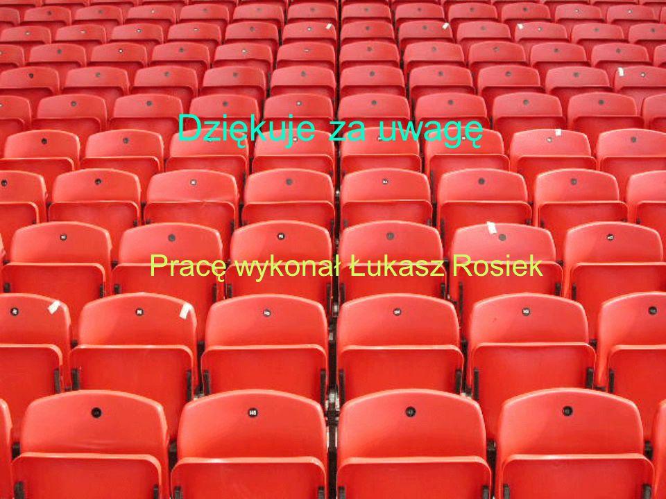 Pracę wykonał Łukasz Rosiek