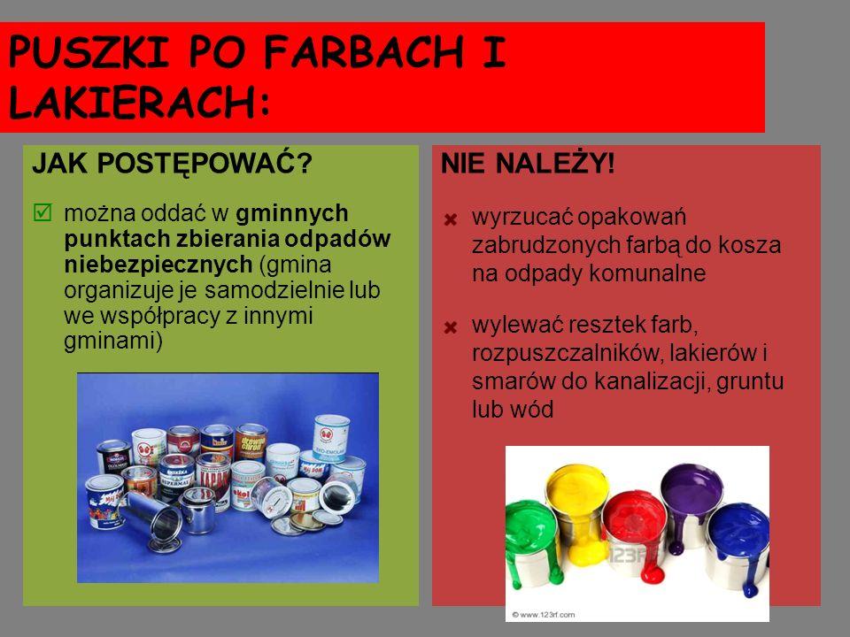 PUSZKI PO FARBACH I LAKIERACH: