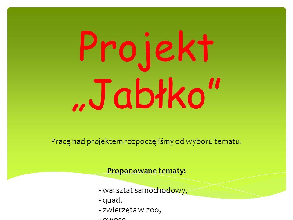 Pracę nad projektem rozpoczęliśmy od wyboru tematu.