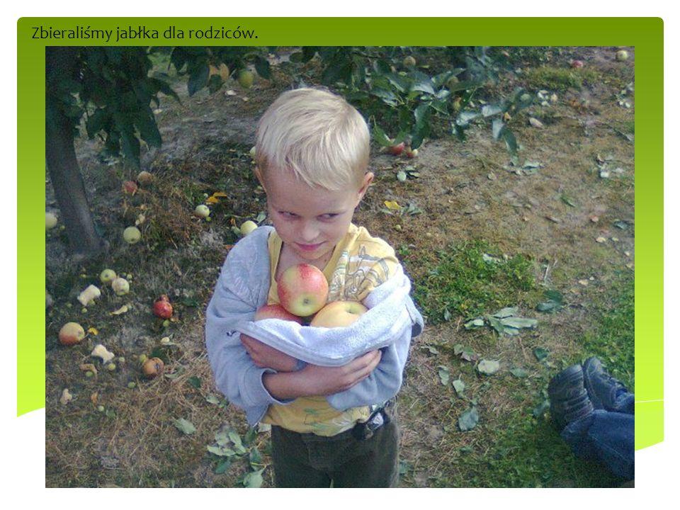 Zbieraliśmy jabłka dla rodziców.