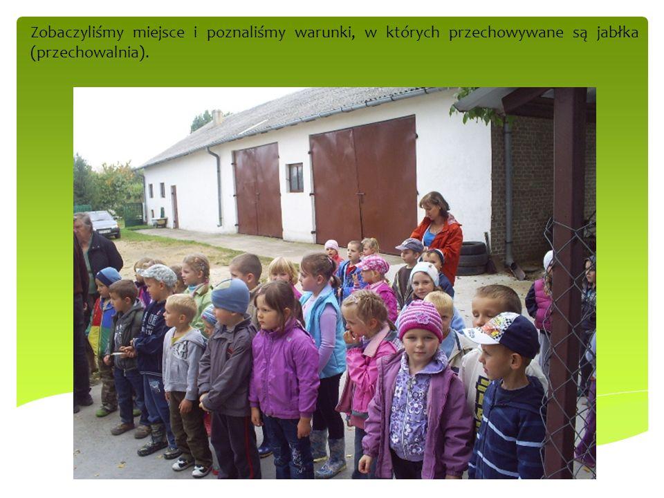 Zobaczyliśmy miejsce i poznaliśmy warunki, w których przechowywane są jabłka (przechowalnia).