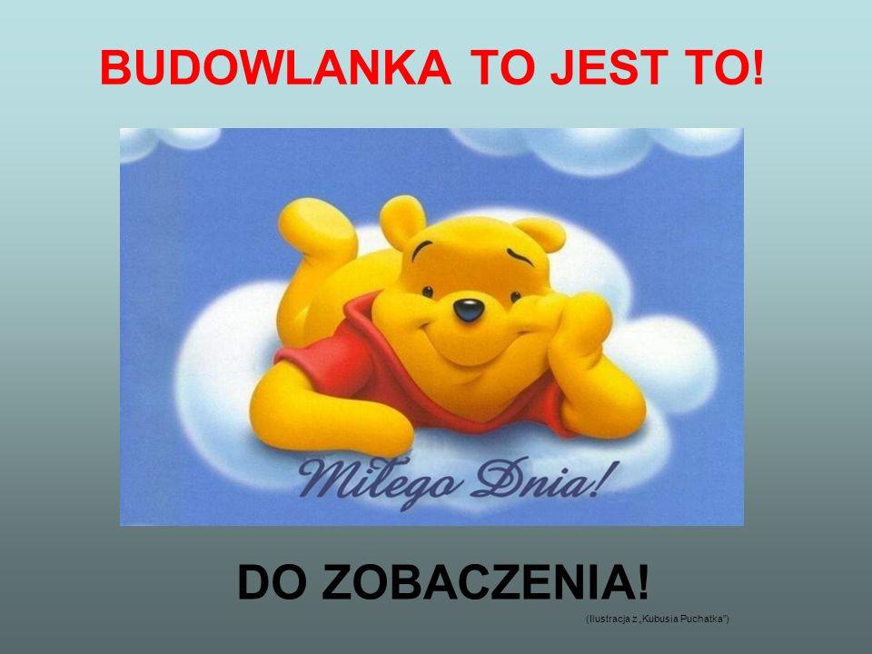 BUDOWLANKA TO JEST TO! DO ZOBACZENIA!