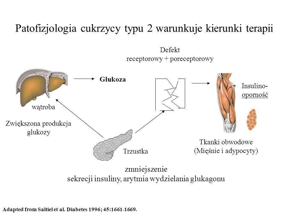 Patofizjologia cukrzycy typu 2 warunkuje kierunki terapii