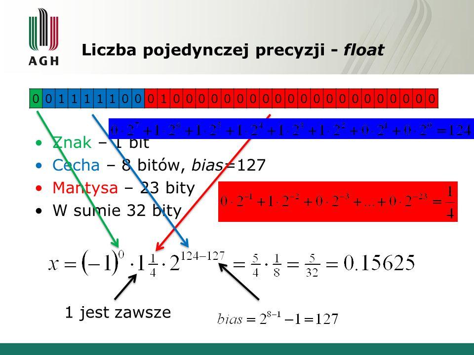 Liczba pojedynczej precyzji - float