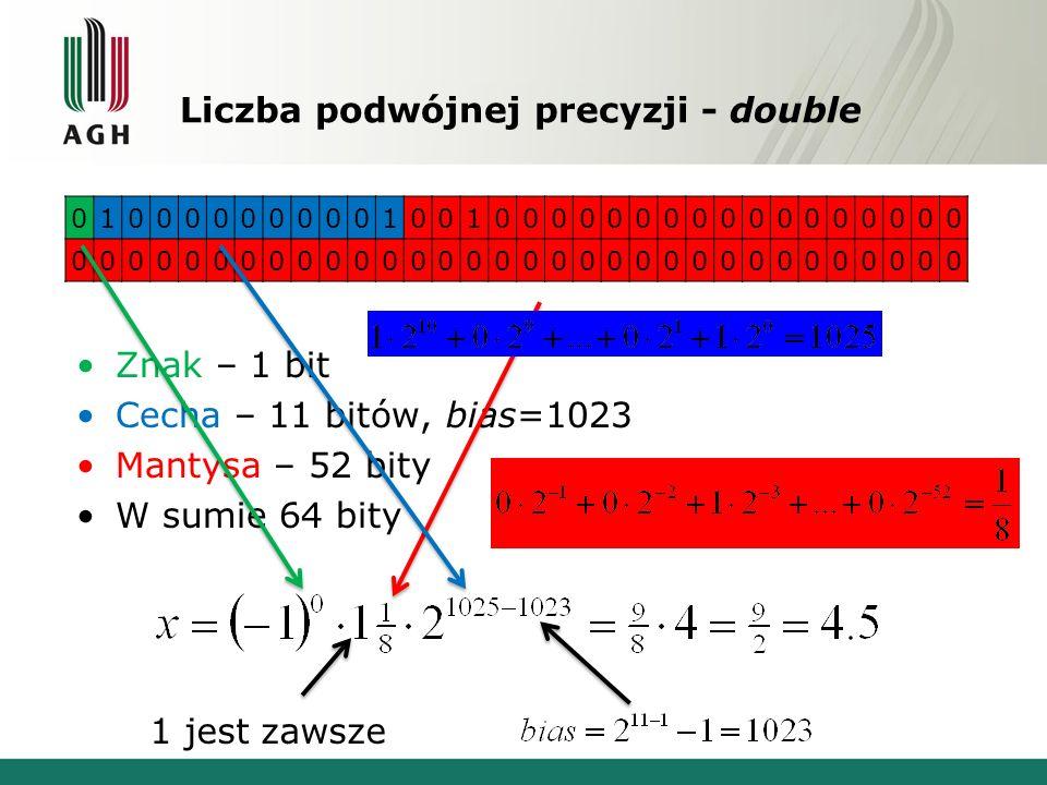 Liczba podwójnej precyzji - double