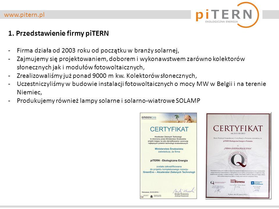 1. Przedstawienie firmy piTERN