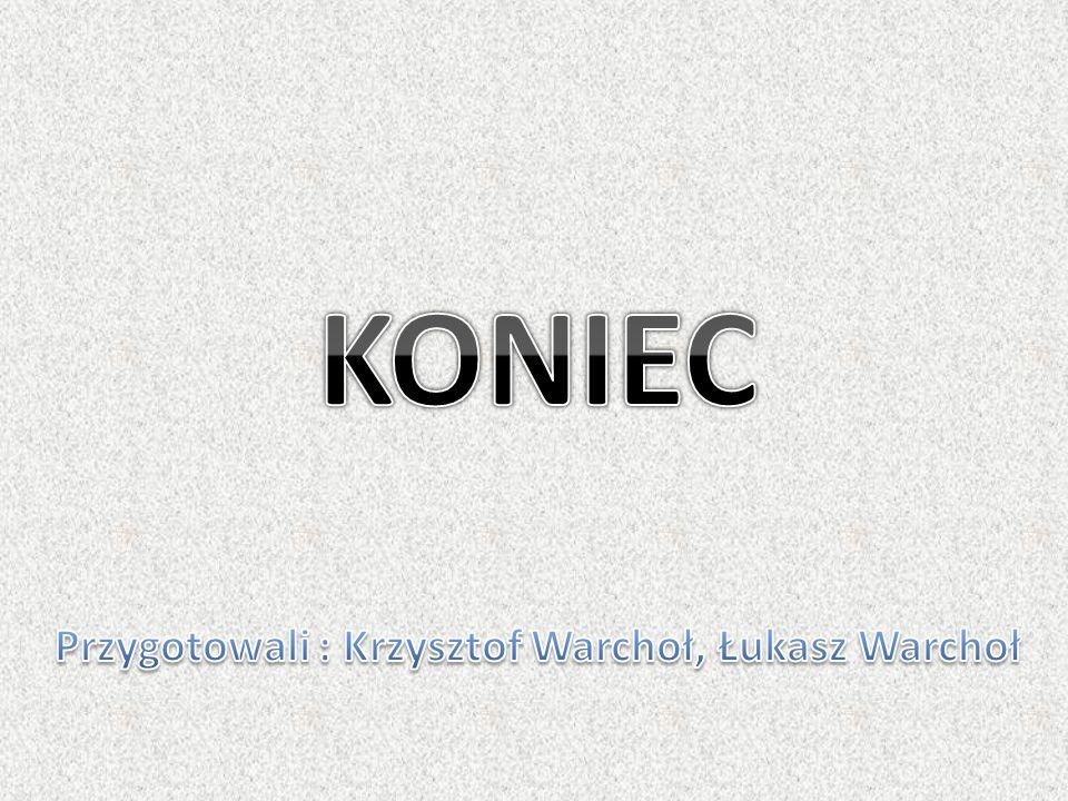 Przygotowali : Krzysztof Warchoł, Łukasz Warchoł