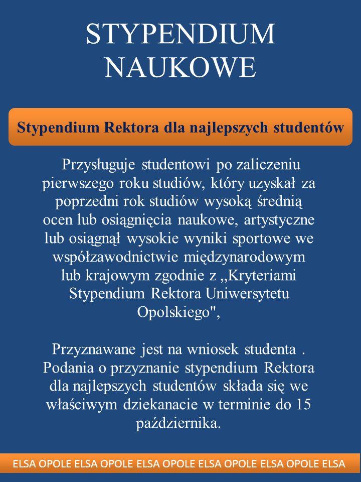Stypendium Rektora dla najlepszych studentów