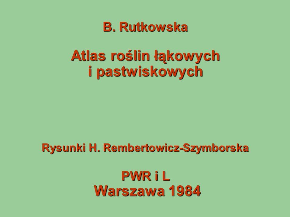 B. Rutkowska Atlas roślin łąkowych i pastwiskowych Rysunki H