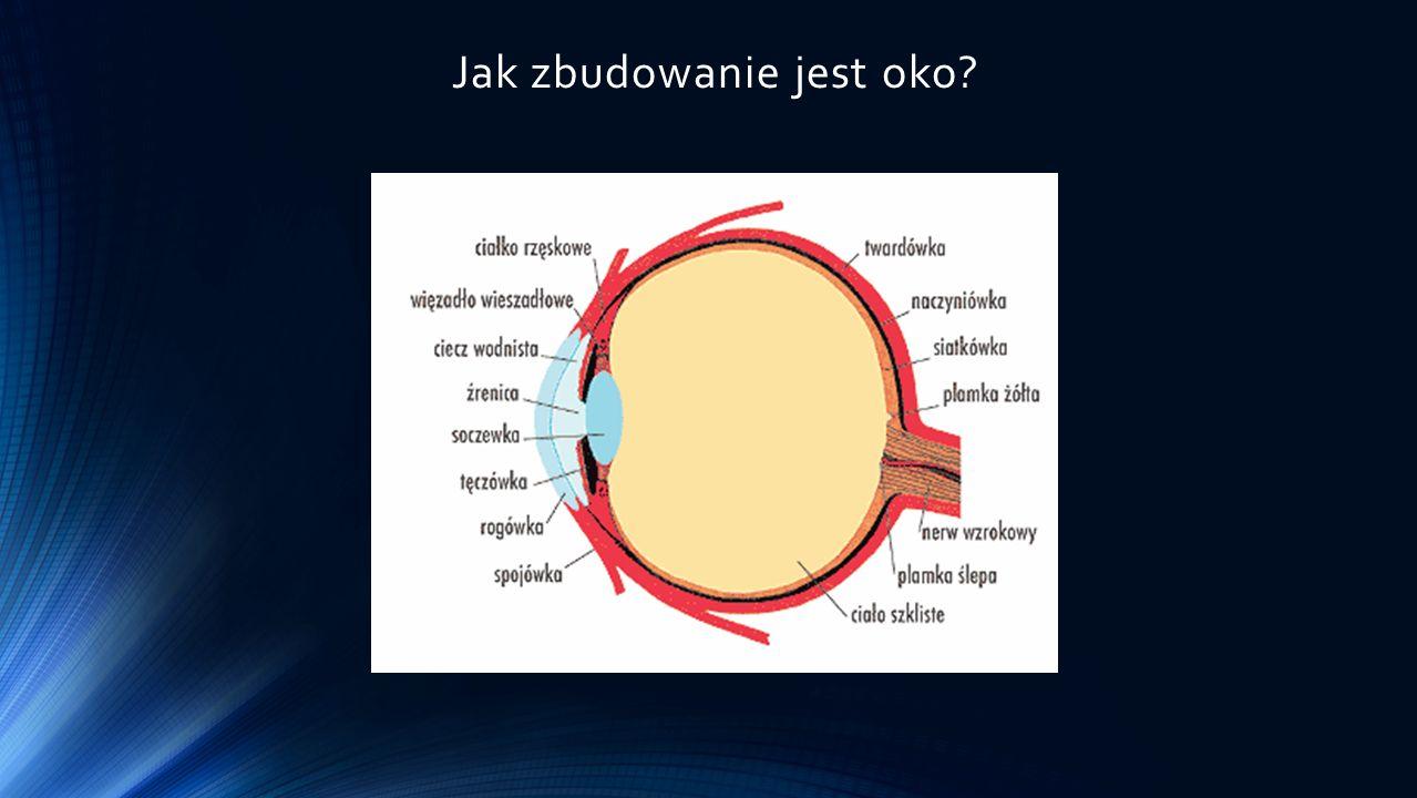 Jak zbudowanie jest oko