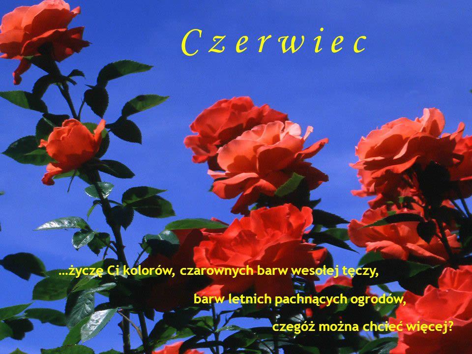 C z e r w i e c …życzę Ci kolorów, czarownych barw wesołej tęczy,
