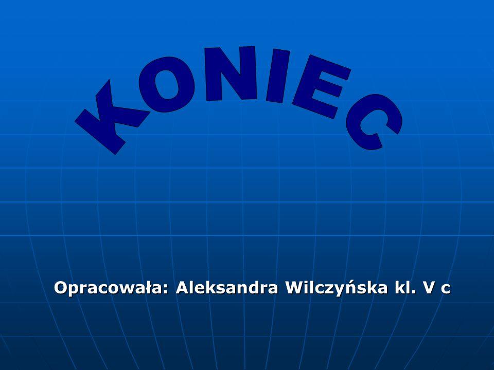 KONIEC Opracowała: Aleksandra Wilczyńska kl. V c