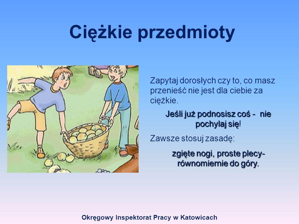 Okręgowy Inspektorat Pracy w Katowicach