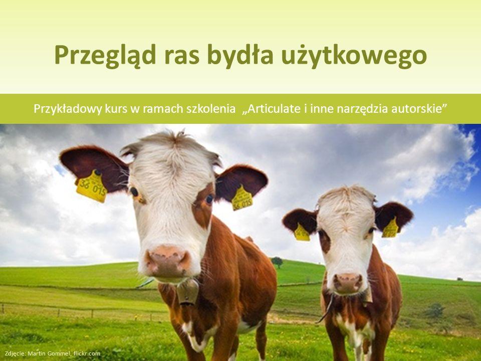 Przegląd ras bydła użytkowego