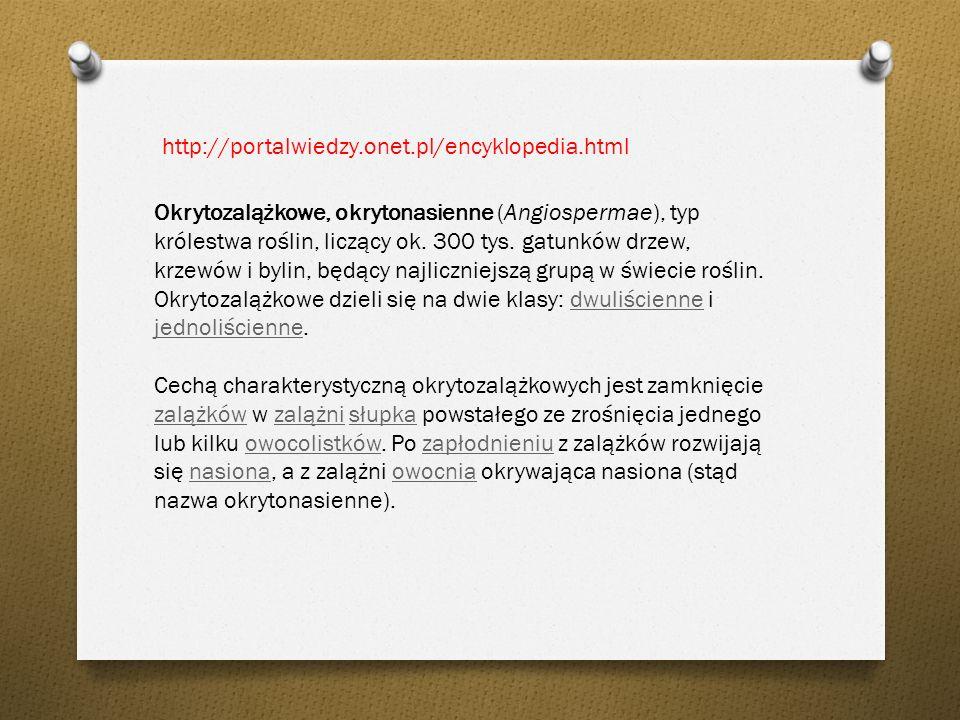http://portalwiedzy.onet.pl/encyklopedia.html