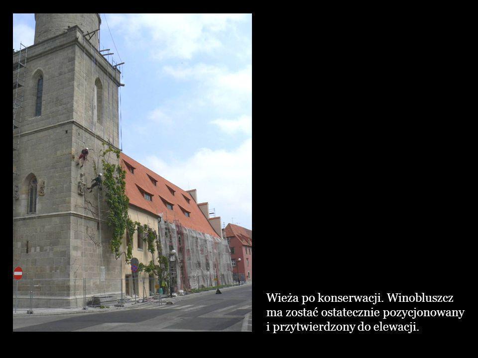 Wieża po konserwacji. Winobluszcz ma zostać ostatecznie pozycjonowany i przytwierdzony do elewacji.