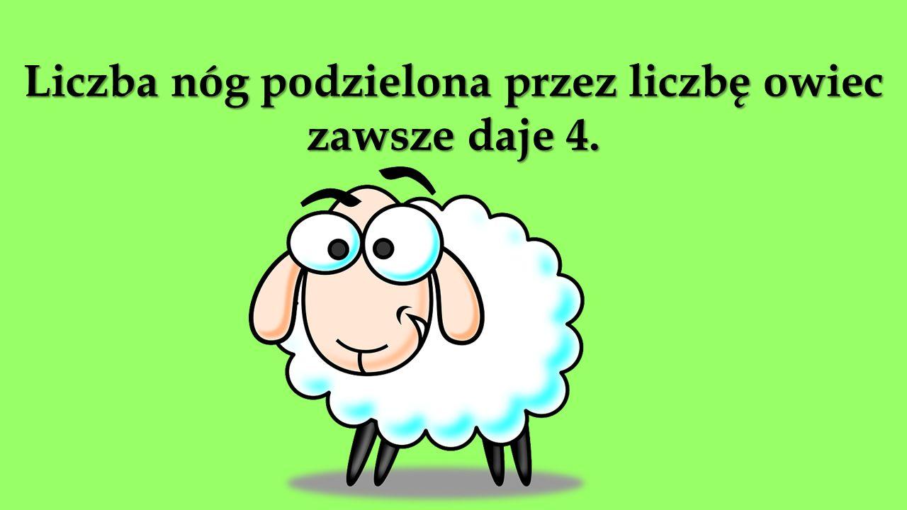 Liczba nóg podzielona przez liczbę owiec zawsze daje 4.