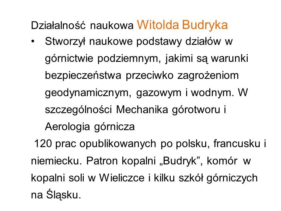 Działalność naukowa Witolda Budryka