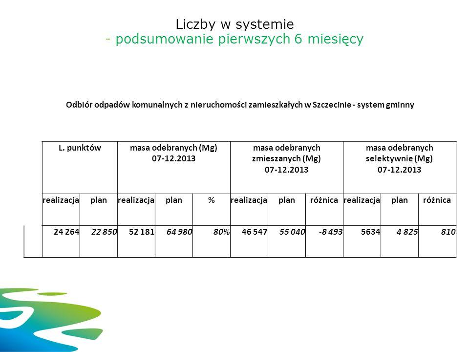 Liczby w systemie - podsumowanie pierwszych 6 miesięcy