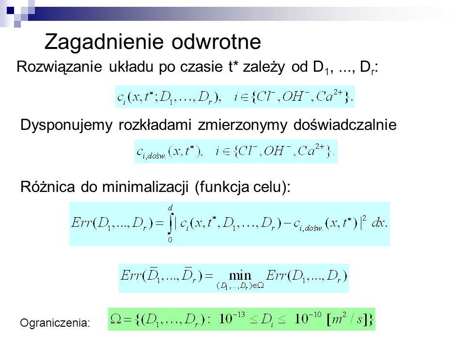 Zagadnienie odwrotne Rozwiązanie układu po czasie t* zależy od D1, ..., Dr: Dysponujemy rozkładami zmierzonymy doświadczalnie.