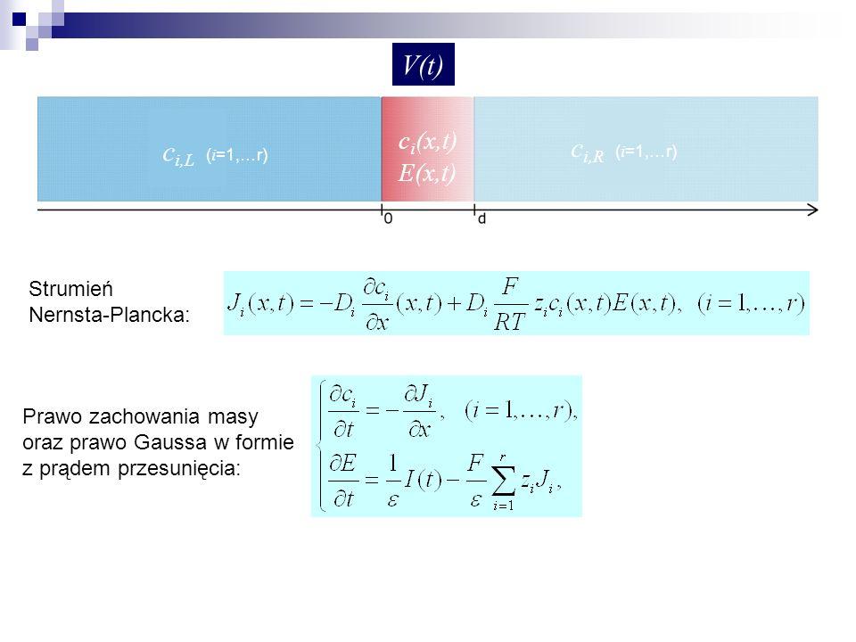 V(t) ci,R (i=1,…r) ci,L (i=1,…r) ci(x,t) E(x,t) Strumień