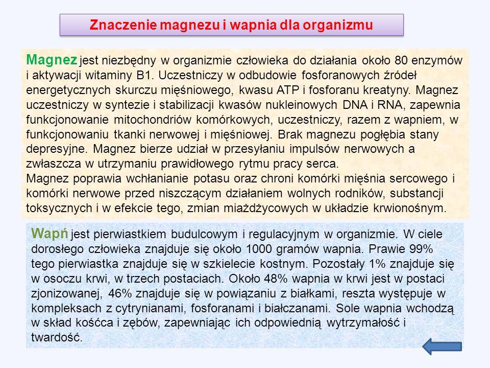 Znaczenie magnezu i wapnia dla organizmu