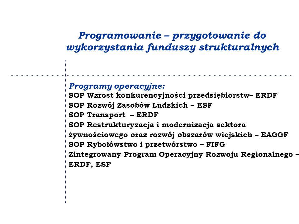 Programowanie – przygotowanie do wykorzystania funduszy strukturalnych