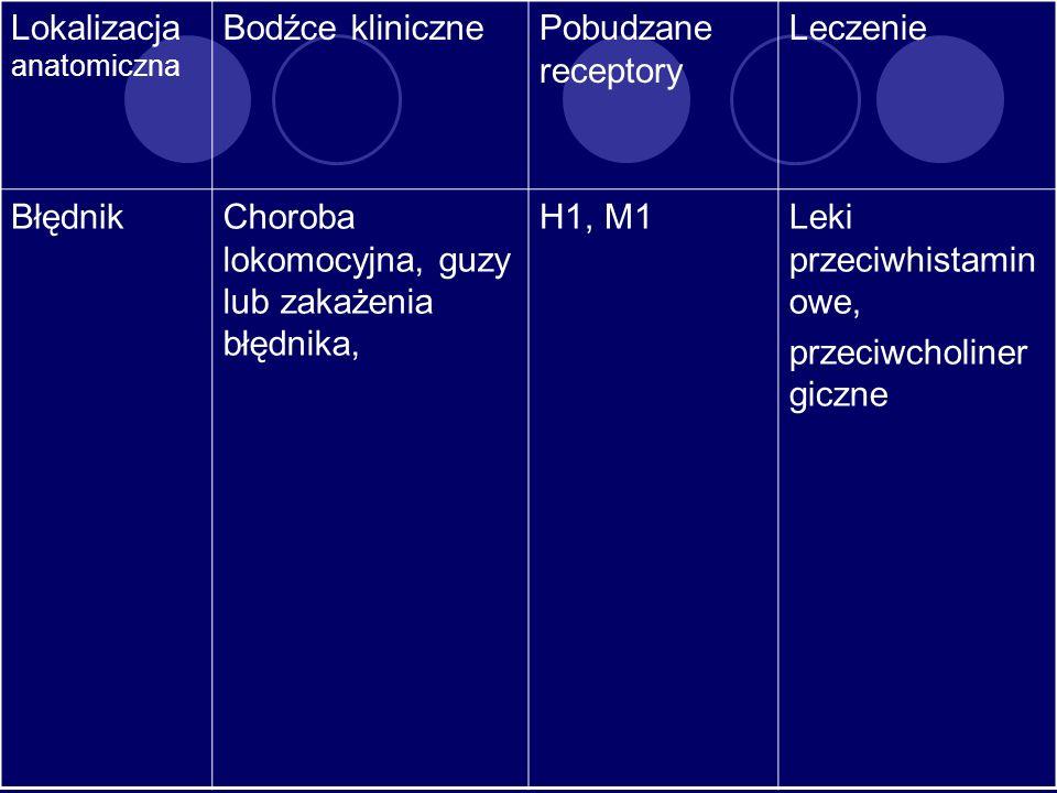 Lokalizacja anatomiczna
