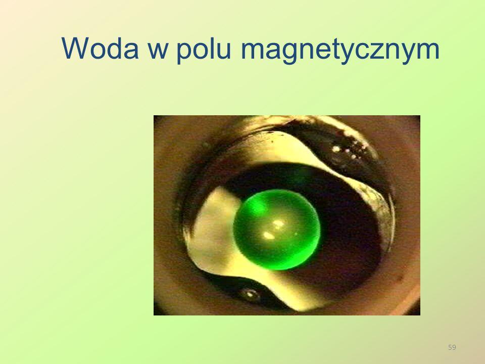 Woda w polu magnetycznym