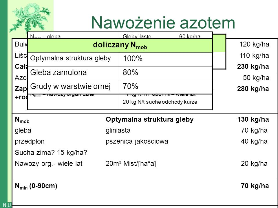 Nawożenie azotem lS sL,uL, L lT, tL 30 40 50 60 bulwa/liść PL 1:0,5