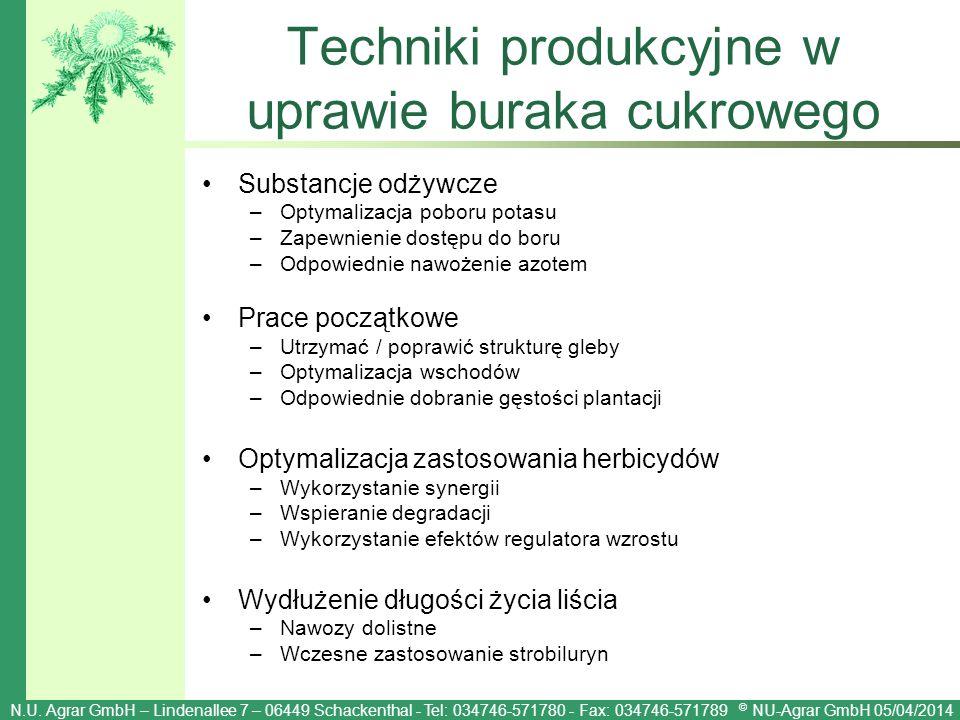 Techniki produkcyjne w uprawie buraka cukrowego