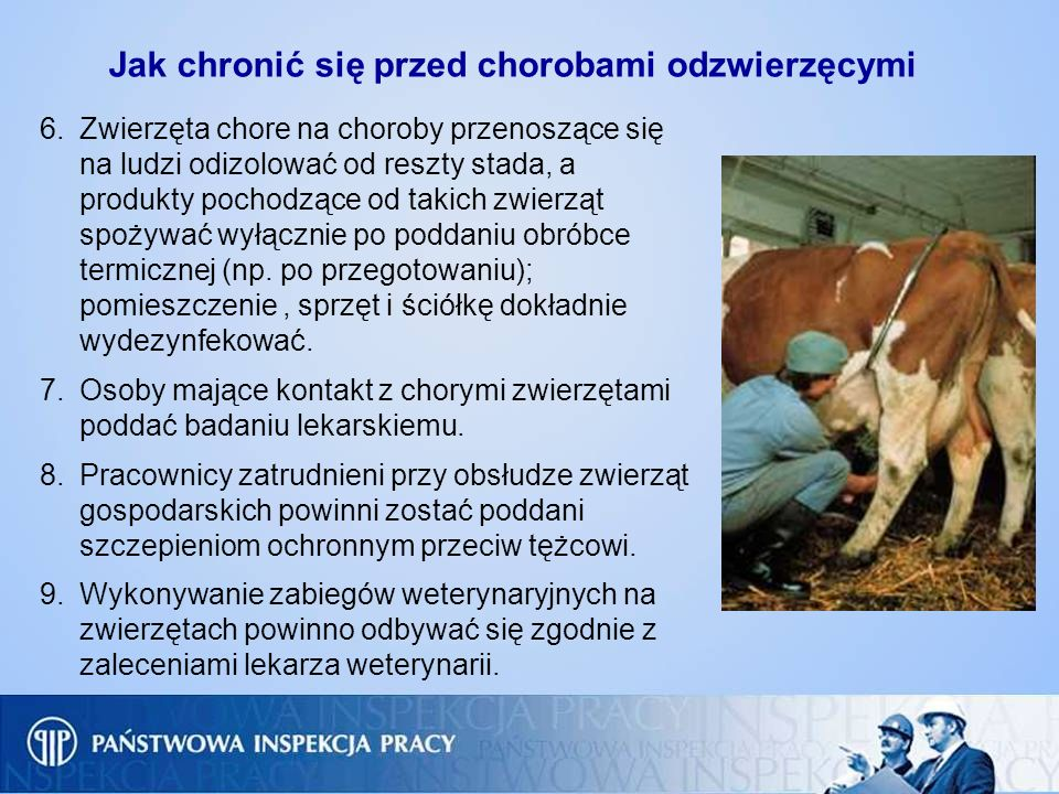 Jak chronić się przed chorobami odzwierzęcymi