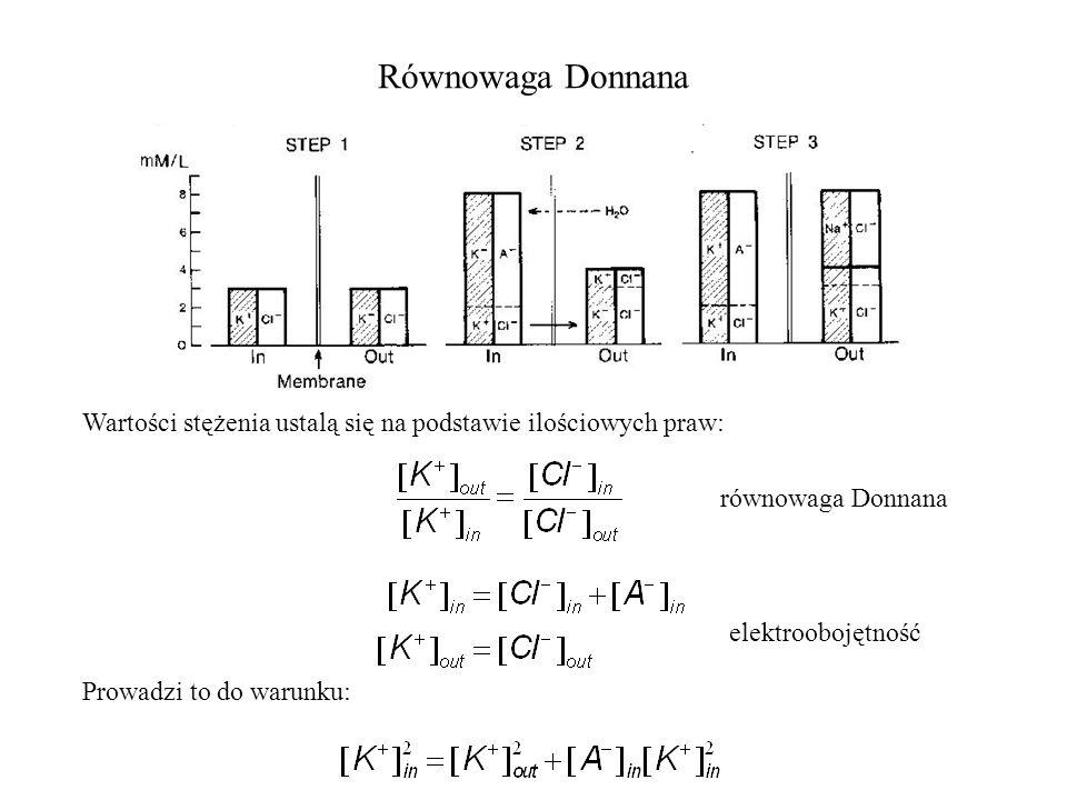 Równowaga Donnana Wartości stężenia ustalą się na podstawie ilościowych praw: równowaga Donnana. elektroobojętność.